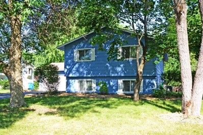 3419 12th Avenue, Anoka, MN 55303 - #: 5256138
