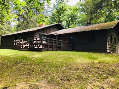 52092 S Center Road, Sand Lake Twp, MN 56680 - #: 5258136