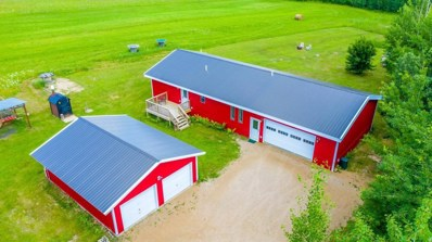 14366 Clearline Road NW, Buzzle Twp, MN 56676 - #: 5263410