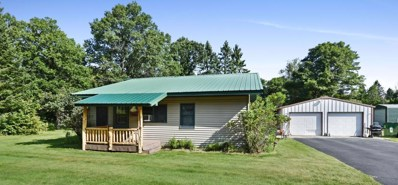 2245 State 84 SW, Pine River, MN 56474 - #: 5280841