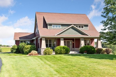 46379 Cape Trail, Cleveland Twp, MN 56017 - #: 5283346