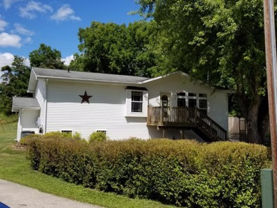 410 W Center Street, Rushford, MN 55971 - #: 5283860