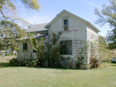 121 W 4th Street, Walters, MN 56097 - #: 5304087