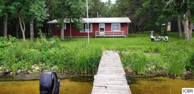 62842 S Round Lake Road, Squaw Lake, MN 56681 - #: 5315189