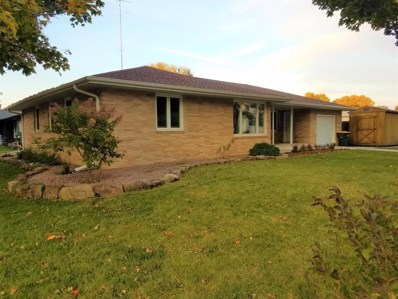 220 Colfax Avenue NW, Renville, MN 55342 - #: 5323208