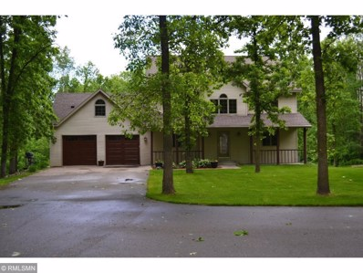 2698 Badger Creek Road, Swanville, MN 56382 - #: 5328954