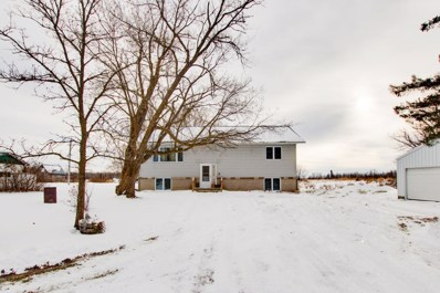 244 Shooks Road SE, Northome, MN 56661 - #: 5336848