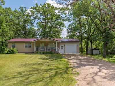16528 Irvine Avenue NW, Clearwater Twp, MN 55320 - #: 5432907