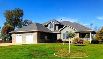 37998 Laser Avenue, Redwood Falls, MN 56283 - #: 5492010