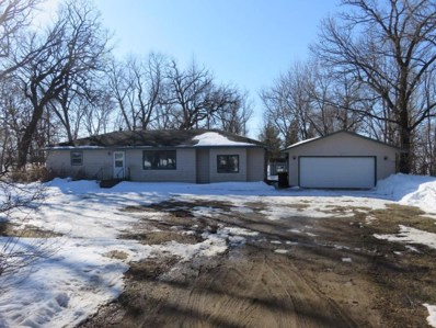 16613 320th Street, New Prague, MN 56071 - #: 5497910