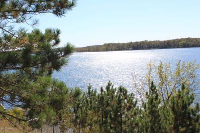 43516 220th Street, Clitherall, MN 56524 - #: 5516873