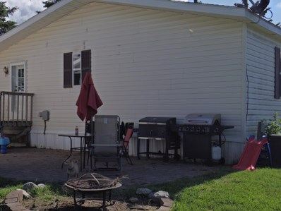 132 2nd Street, Shevlin, MN 50116 - #: 5602025