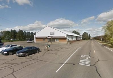 13703 Highway 25, Genola, MN 56364 - #: 5607015