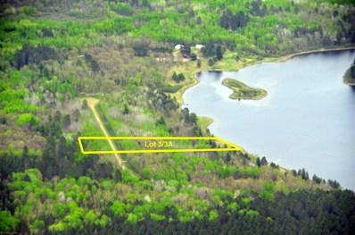 3 Shanty Lake Dr N, Lake George Twp, MN  - #: 5624271