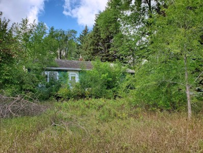 1997 Highway 75, Canby, MN 56220 - #: 5649027