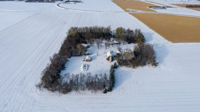 1119 County Road 7, Tyler, MN 56178 - #: 5676656