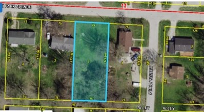 Lots 4-6 S Park Ave, Fayette, MO 65248 - #: 397951