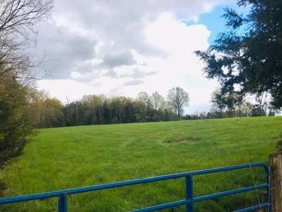 Tract A County Road 156, Auxvasse, MO 65231 - #: 399231