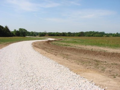 Lot 4 Route Y, New Bloomfield, MO 65063 - #: 400613