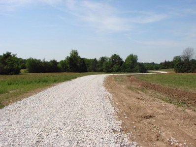 Lot 8 Route Y, New Bloomfield, MO 65063 - #: 400617