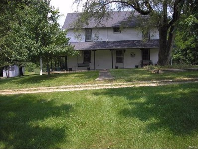 19492 Highway M, Curryville, MO 63339 - #: 17005875