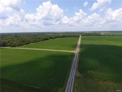 0 Wilhoit Airport Road, Staunton, IL 62088 - #: 17049868
