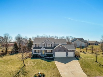 321 Red Wing Court, Troy, MO 63379 - #: 18020972
