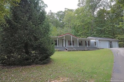 161 Hidden Valley Fishing Club, Burfordville, MO 63739 - #: 18067185