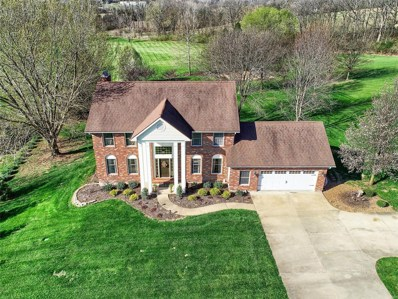9 Autumn Meadow Court, Washington, MO 63090 - #: 18070827