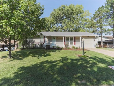 25 Edgemont Road, St Peters, MO 63376 - #: 18072112