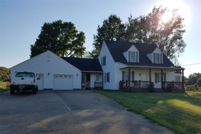 3623 Highway T, Perryville, MO 63775 - #: 18075546