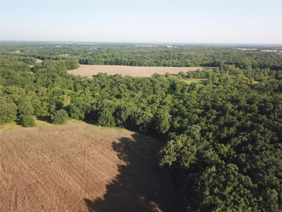 0 White Wildlife Road, Silex, MO 63377 - #: 18078604