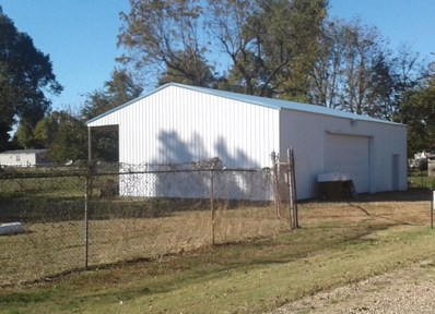 27588 Front Street, Essex, MO 63846 - #: 18087721
