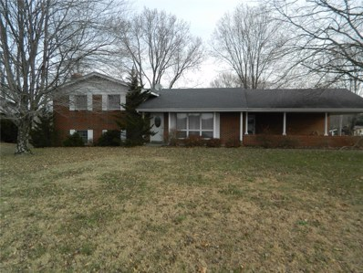 3065 Highway B, Perryville, MO 63775 - #: 18092076