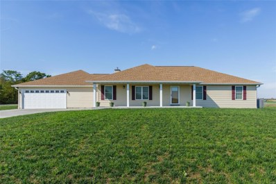 393 Linns Mill Road, Troy, MO 63379 - #: 18092325