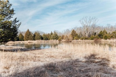 0 16.85 Acres County Road 3210, Rolla, MO 65401 - #: 18094368