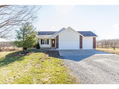60 Morgan Valley Lane, Foley, MO 63347 - #: 19001755