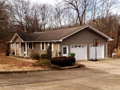 209 Estate Drive, Chester, IL 62233 - #: 19002083