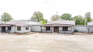 407 Schofer St, Doolittle, MO 65550 - #: 19004584