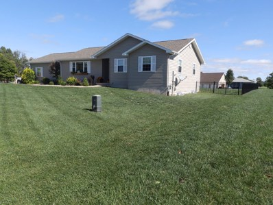 11 Orchard Drive, Barry, IL 62312 - #: 19013833
