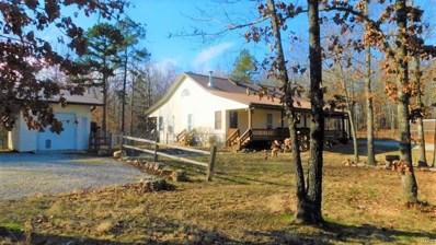 9767 County Road 459, Birch Tree, MO 65438 - #: 19018385