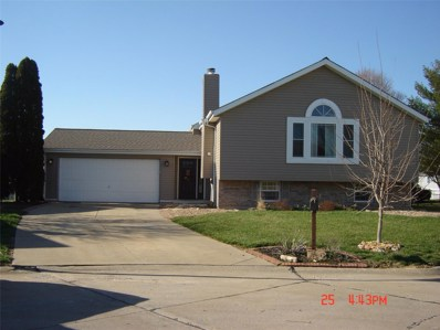 804 Carriage Hill, St Peters, MO 63304 - #: 19020145