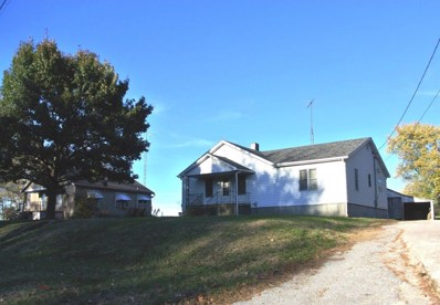 1311 Old St. Marys Road, Perryville, MO 63775 - #: 19022904