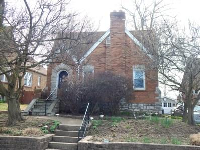 808 Cumberland, St Louis, MO 63125 - #: 19024166