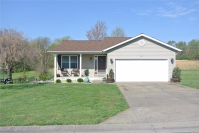 920 Tradewinds Drive, Perryville, MO 63775 - #: 19025128