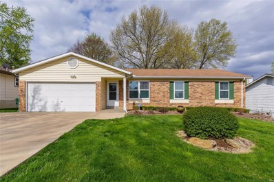 10 Dianne Drive, St Peters, MO 63376 - #: 19027406