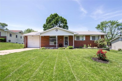 617 Walter Place, St Charles, MO 63301 - #: 19036826