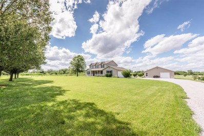 8879 New Athens Darmstadt Road, New Athens, IL 62264 - #: 19040578