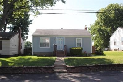 228 Baumann Avenue, St Louis, MO 63125 - #: 19042426