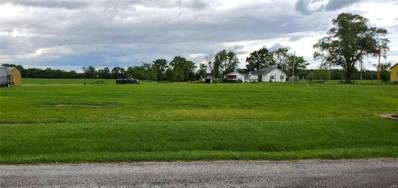 Lucien Avenue, Jerseyville, IL 62052 - #: 19047628